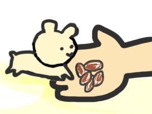 手のひらのエサを食べるハムスター