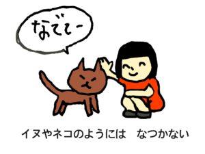 なつくネコ
